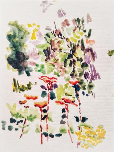 woods and flowers - 25 x 35 cm