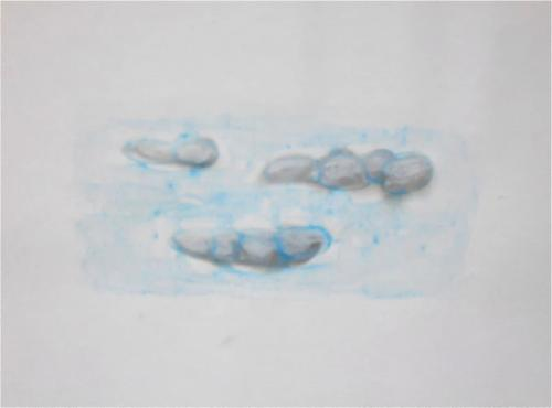 No title II Smoke and pastel on paper (21 x 29 cm)