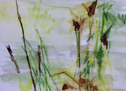 Branches and grass Bister and waterpastel on paper (21 x 30 cm)